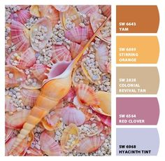 #Paint colors from #ColorSnap by Sherwin-Williams #sherwinwilliams orange oranges warm calm misty grey gray burnt orange peach peachy beach beachy cute shells seashells inspired lilac purple misty blue tint feminine girlie girly off beat ecclectic decor interior scheme fashion haute couture #pantone fall fashion color trends 2016 unique quirky #chipit