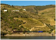 https://flic.kr/p/Dzhavg   Ferrão 20-09-15   Locomotiva Diesel nº1424, Comboio Histórico do Douro