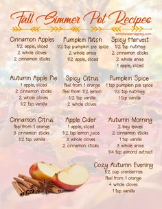 Fall Simmer Pot Recipes that will bring a cozy Autumn inside your home! Stove Top Potpourri, Simmering Potpourri, Fall Potpourri, Homemade Potpourri, Potpourri Recipes, House Cleaning Tips, Diy Cleaning Products, Cleaning Hacks, Fall Smells