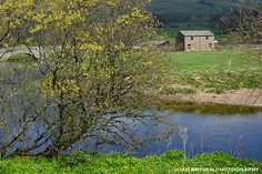 An exclusive collection of royalty free stock photos, discovery walks, greetings cards, prints and wall art. Yorkshire Dales, North Yorkshire, British Country, Country Life, Great Britain, Vegetable Garden, Walks, United Kingdom, Ireland