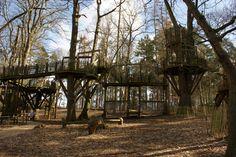 De houten speelconstructies gaan op in het bos.