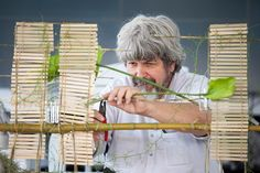 Gregor Lersch Daniel Ost, Gregor Lersch, Flora Design, Around The Worlds, Sculpture, Display, Board, Shop, Ideas