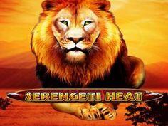 Safari, Ab Sofort, Online Casino, Slot, Animals, Arcade Game Machines, Playing Games, Animales, Animaux