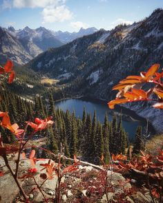 """Holly Johnson on Instagram: """"If you could only experience one of the following for the rest of your life... would you choose fall colors or wildflowers? I was asking…"""" Holly Johnson, North Cascades National Park, You Choose, Wildflowers, Mount Rainier, National Parks, Rest, Mountains, Fall"""