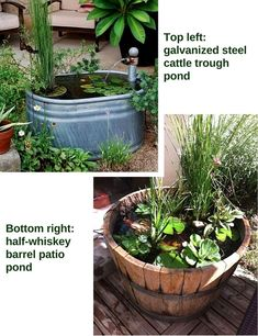 Stunning Water Features You Can Make In A Day - Container Water Gardens Small Water Gardens, Container Water Gardens, Indoor Water Garden, Container Gardening Vegetables, Large Water Features, Indoor Water Features, Water Features In The Garden, Patio Pond, Ponds Backyard