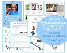 Introductory Entomology Lessons for Kids - Unit Study - Eva Varga