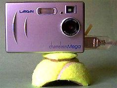 50 alternative uses for old tennis balls