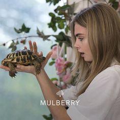 Cara Delevigne | Mulberry | Turtle love