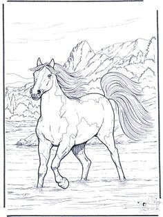 Coloring Page Horse in the river