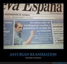 En Asturias de curan a puñetazo limpio... Y FUNCIONA - O funcionas o te funciono