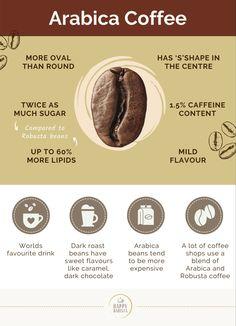 What Is Arabica Coffee, Arabica Coffee Beans, Coffee Farm, Coffee Shop, How To Store Potatoes, Coffee Review, Dark Roast, Best Coffee, Food
