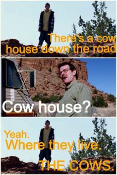 Breaking Bad - Jesse: there's a cow house down the road. Jesse: yeah, where they live. The cows. Breaking Bad Quotes, Watch Breaking Bad, Breking Bad, Cow House, Plus Tv, Tv Quotes, Funny Quotes, Great Tv Shows, Film Serie