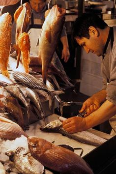 A fish stand at central market, Athens- First fish market I ever went to... could have easily been my last...