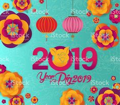 Happy Chinese New Year 2019 design, cute pig. Happy pig year in Chinese words, fuchsia background royalty-free happy chinese new year 2019 design cute pig happy pig year in chinese words fuchsia background stock vector art & more images of 2019