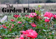 The Garden Plan - Create Your Space - Get the whole series to create a garden that works for your climate.