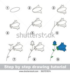 Step by step drawing tutorial. Vector kid game. How to draw a Bluebell flower - stock vector