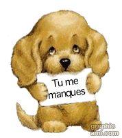 Chiot Portant Message : Tu Me Manques
