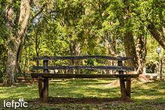 • Relaxar - Quando visitamos um parque é muito comum usarmos um banco para descansar, conversar com alguém ou simplesmente sentar para admirar a paisagem. Nesta foto, vemos um banco feito de madeira em meio à um ambiente arborizado. Aplicável em projetos que envolvam lazer e natureza. 📷 by Leandro Floriano Download da imagem no #iStock: https://www.istockphoto.com/…/banco-de-madeira-em-um-parque… #bench #park #flower #garden #forest #environment #ecology #leisure #nature #natural #photo