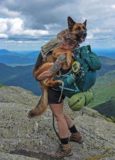 Meet Bear: The mountain-climbing, desert-hiking adventure dog of Nicole Handel Camping And Hiking, Camping Life, Beach Camping, Camping Survival, Outdoor Survival, Mountain Climbing, The Great Outdoors, Animal Crossing, Adventure Travel
