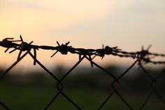 How is barbed wire dangerous - Barbed wires are so dangerous because this type of wire has sharp points every few inches. Barbed Wire Fencing, First Target, Hans Peter, Work Meeting, Work Family, Work Life Balance, Day Off, Social Media Design, Horror Stories