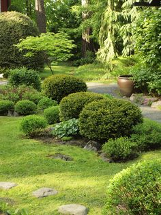 Japanese style garden in Finland, June 2017 Backyard Garden Design, Backyard Landscaping, Japanese Gardens, Japanese Style, Garden Inspiration, Beautiful Gardens, Inspire, Gardening, Landscape
