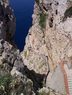 Sardegna, Grotta di Nettuno
