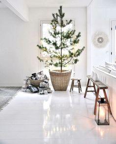 Throwback to our last Christmas...✨ Selailin vanhoja joulukuvia ja löysin tämän kuvan viime joululta, hahah hyvin samanlainen kuin sitä edellinenkin joulu, mutta näinhän se on, joulu näyttäytyy meille vuodesta toiseen samanlaisena ja siitähän ne perinteet syntyvätkin... . . .