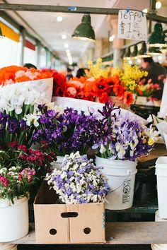ZsaZsa Bellagio – Like No Other: Smile and Wave My Flower, Fresh Flowers, Beautiful Flowers, Poppy Flowers, Bouquet Flowers, Floral Bouquets, Smile And Wave, Flower Market, Flower Shops
