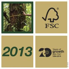 2013  - Over 180 million hectares of forest worldwide are managed according to FSC standards.  - 27,000th chain of custody certificate issued.  - Permanent Indigenous Peoples' Committee established to give a formal voice to indigenous peoples in FSC's principles.  ‪#‎FSC20YEARS‬ ‪#‎fscga‬ ‪#‎certified‬ ‪#‎FSC‬ ‪#‎Forest‬ ‪#‎worldwide‬ ‪#‎community‬