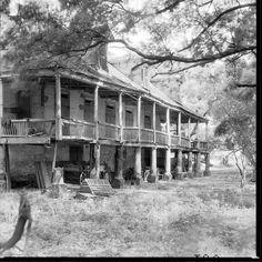 Elmwood Plantation by Robert Tebbs    Exterior view of John H. Ransdell's Elmwood Plantation in Alexandria,  Rapides Parish, Louisiana.