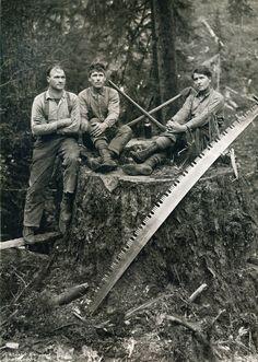 Lumberjack bros. Western Washington, Washington State, Great Photographers, Vintage Artwork, Artwork Prints, Canvas Prints, Pacific Northwest, Old Photos, Westerns