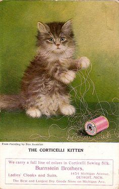"""The Corticelli Kitten' thread trade card by Ben Austrian for The Burnstein Brothers, ca. late 1800s"