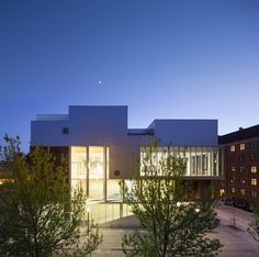 Gallery of SH2-Sundbyoster Hall II / Dorte Mandrup Arkitekter - 18