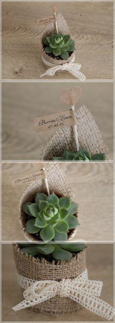 Lovely Colors // Minik Bitki, Succulents as cute little wedding giveaways. These low-maintenance plants are perfect for even Mr&Mrs brown-thumbs. /// Nikah hediyesi olarak modern ve şık sukulentlere ne dersiniz? Bakımı oldukça kolay olan bu minik bitkileri, en beceriksiz dostlarınız bile rahatça yetiştirebilecek! Mükemmel değil mi?