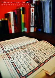 The Book of Life, Al-Quran...  The only book to read...