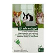 Advantage Spot On for Small Cats, Small Dogs and Pet Rabbits    Flea protection for small cats, dogs and pet rabbits weighing below 4kg    http://www.thepetmedicinecompany.co.uk/cat/flea-and-tick-treatment/Advantage-Spot-On-for-Small-Cats,-Small-Dogs-and-Pet-Rabbits-less-than-4kg-4-Pipettes-ADV002.php    £12.10