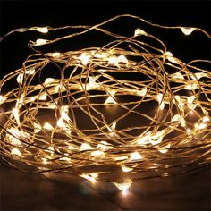 USA Warm White 10M Copper Wire 100LED String party decoration light+PowerAdapter