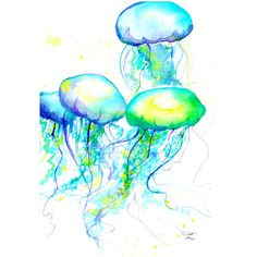 Print from original watercolor painting jellyfish by Jessica Durrant... ($25) ❤ liked on Polyvore featuring animals, backgrounds, fillers, art and drawings
