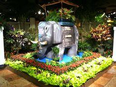 Andrew Skipper's entry garden at the 2013 Macy's Flower Show