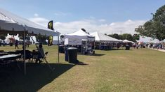 Safety Harbor, FL Seafood Festival