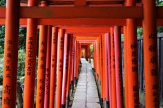 While Kyoto's Fushimi Inari Taisha shrine has the world's most famous vermilion torii gate, it's little known but we can also see very similar thing in Tokyo. Nezu Shrine is the underrated, yet very gorgeous shrine with red torii gates tunnel in Tokyo. Ueno Park, Torii Gate, Hillside Garden, Japan Travel Guide, Last Minute Travel, Tokyo Japan, Japan Trip, Instagram Worthy, Historical Sites