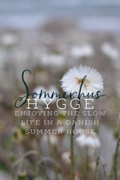 Experiencing Danish Hygge in a summer house
