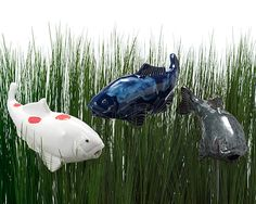 FISH IN THE GARDEN - who needs a koi pond when you have glass fish swimming around your lawn?!  $95