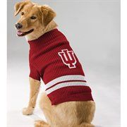 Indiana Hoosiers Dog Sweater