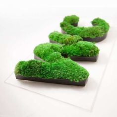 Natural restroom label symbol made with natural preserved moss. Lettering Design, Sign Design, Moss Plant, Terrarium Ideas, Vertical Planter, Preserved Roses, Bonsai, Signage, Succulents