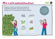 wild-cocktail-rgb.jpg (3508×2480)