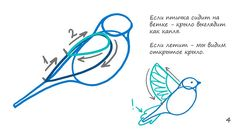 Vaneeva Irina: Как рисовать птичку Drawing Techniques, Art Tutorials, Ink, Patterns, Drawings, Blog, Sketch, Videos, Block Prints