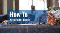 How To Keep Pet Food Fresh