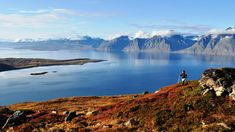 Visit Lyngenfjord | Experience the Lyngenfjord region - a jewel between Tromsø and Alta Tromso, Book Activities, Alps, Mountain Biking, Finland, Norway, Skiing, Places To Go, National Parks