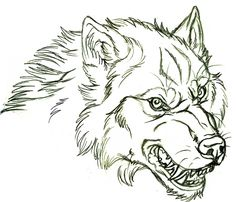 New Ideas For Tattoo Wolf Angry Werewolves Wolf Tattoos, Wolf Face Tattoo, Wolf Tattoo Design, Wolf Design, Animal Sketches, Animal Drawings, Wolf Face Drawing, Angry Wolf, Wolf Sketch
